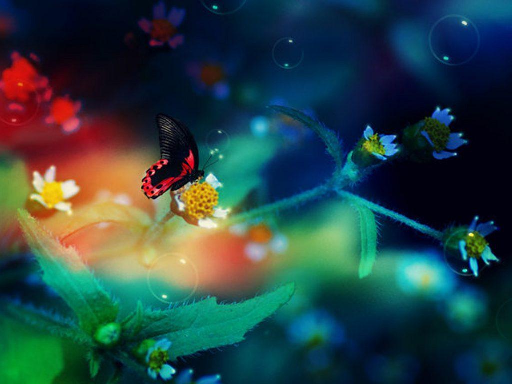 Фото море девушка закат