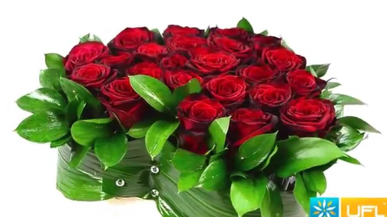 Красные красивые цветы