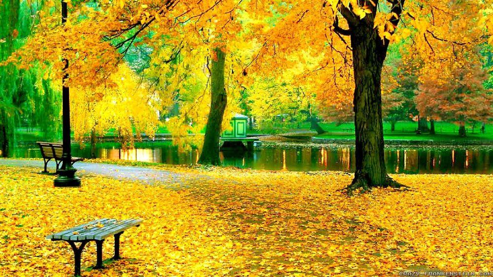 Фото осень горы
