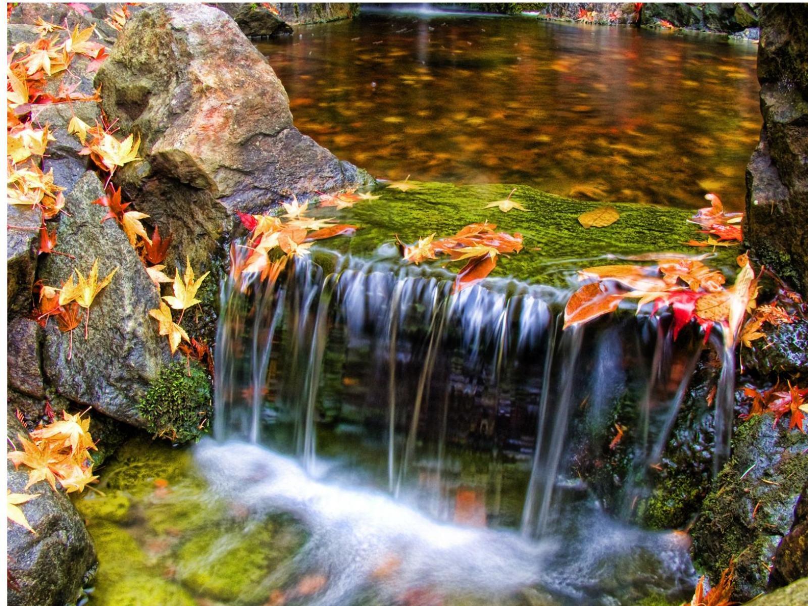 Красивые картинки природы (60 фото) ???? Прикольные картинки и юмор