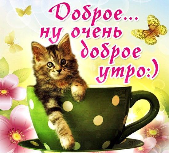 Утро кофе Позитивные фото