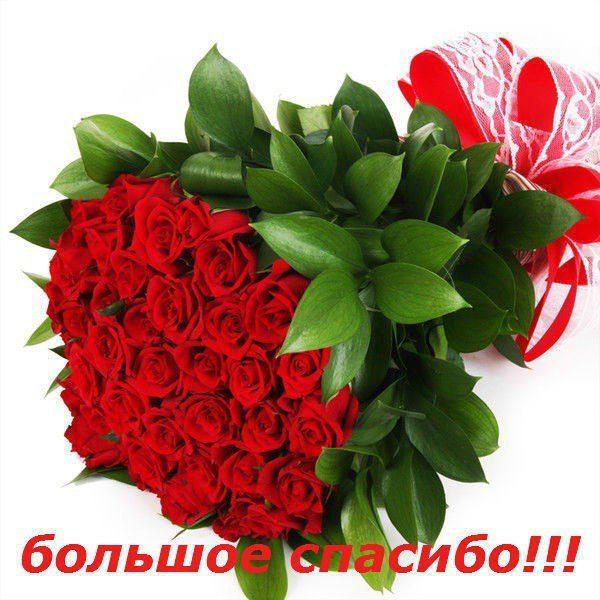 спасибо картинки цветы