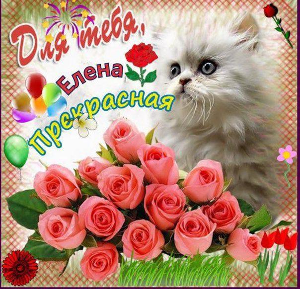 Поздравления с днем рождения с картинками и стихами