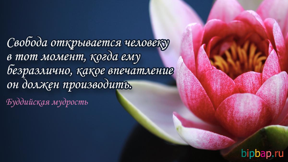 Картинки цветы со словами со смыслом