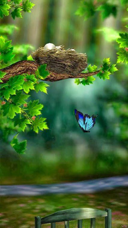 Фото природа цветы