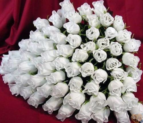 Букет красивый на белом фоне
