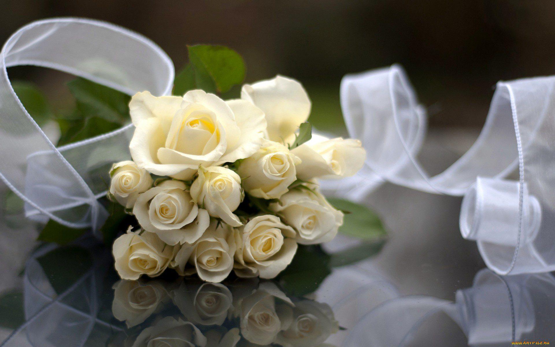 Картинки красивый букет белых роз