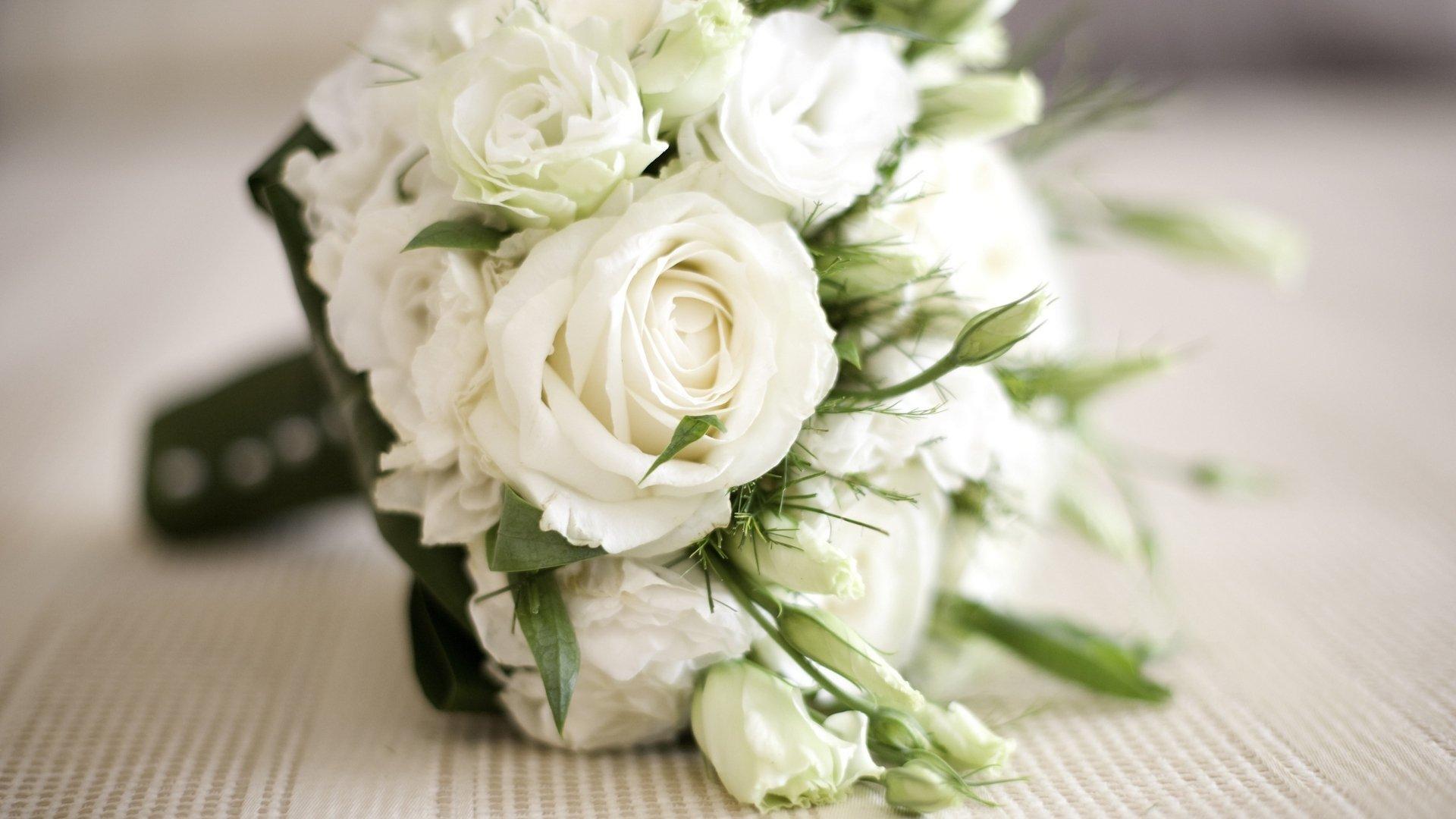 Картинки белые свадебные розы
