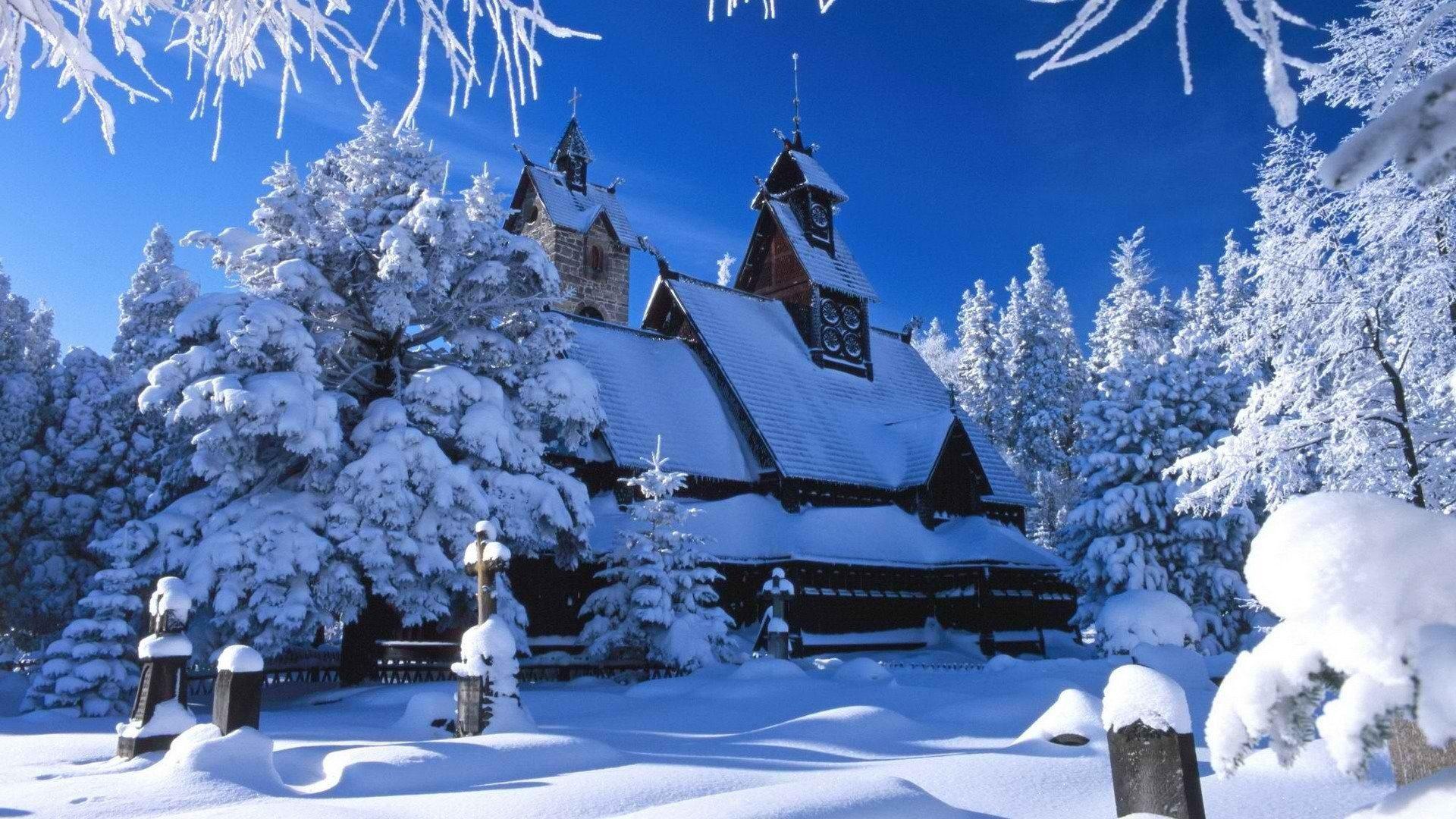 настоявшийся красивые зимние новогодние пейзажи фото и картинки курорт самым