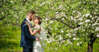 Красивые картинки влюбленных пар (35 фото)
