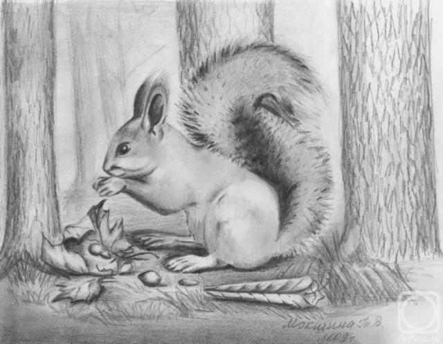 Природа картинки нарисованные карандашом