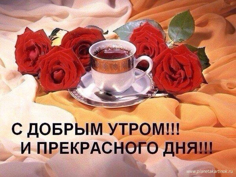 пожелание хорошего дня и настроения картинки