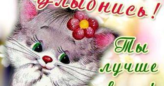 Красивые картинки для Одноклассников (35 фото)