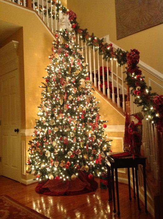 смотреть фото елка дома буду брать его