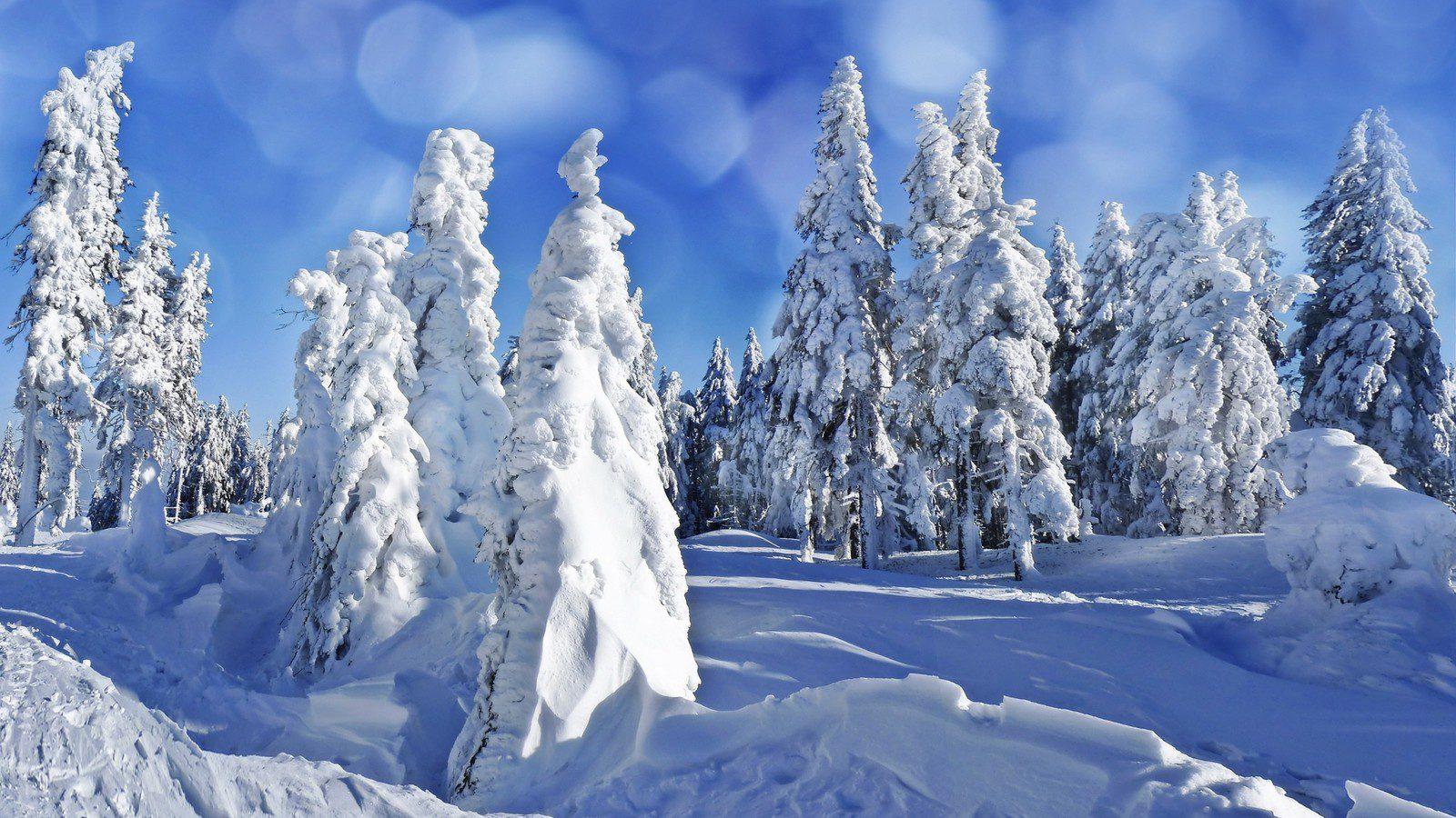 вам красивая зима большие открытки первых