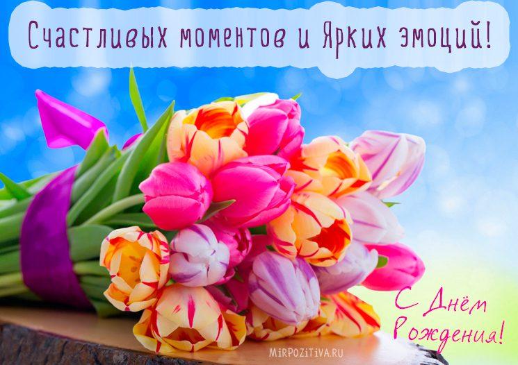 Красивые букеты с юбилеем, цветы оптом на улице малкова