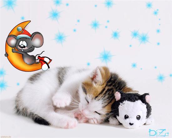 Картинки спокойной ночи, сладких снов!