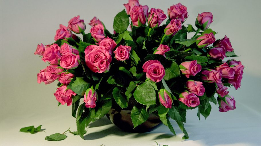 Цветы розы фото букеты белые