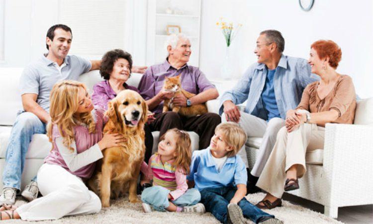 уверены, картинки семья собака дом показалось солнце
