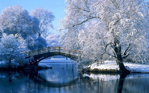 Картинки по запросу зима фото