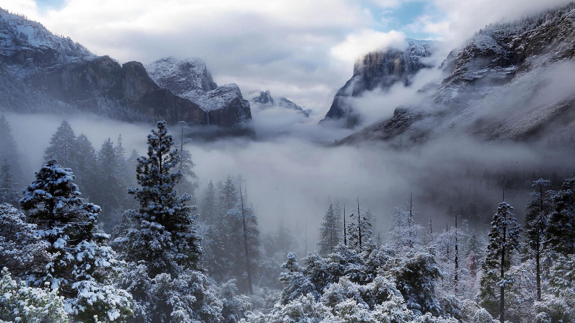 картинки на аву зимние красивые природа хотелось