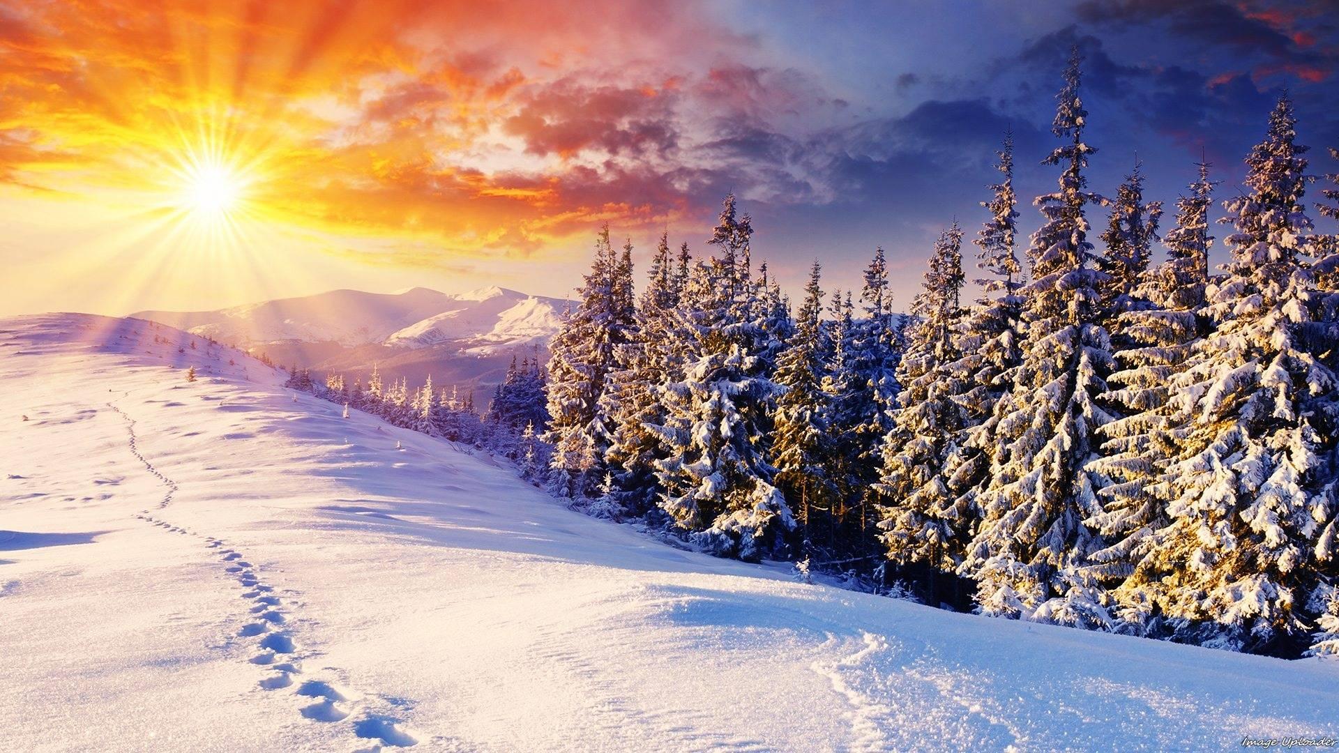 Картинки по запросу фото зима