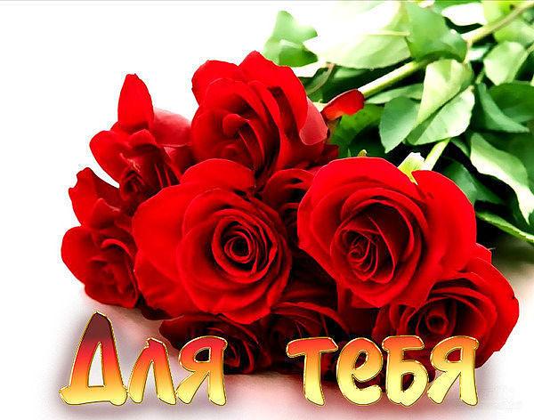 Цветы для любимой с днем рождения