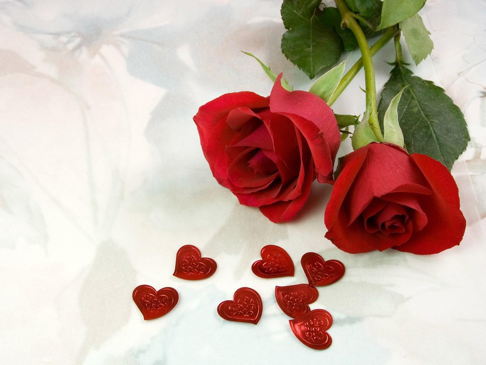 Картинки цветы с надписями о любви