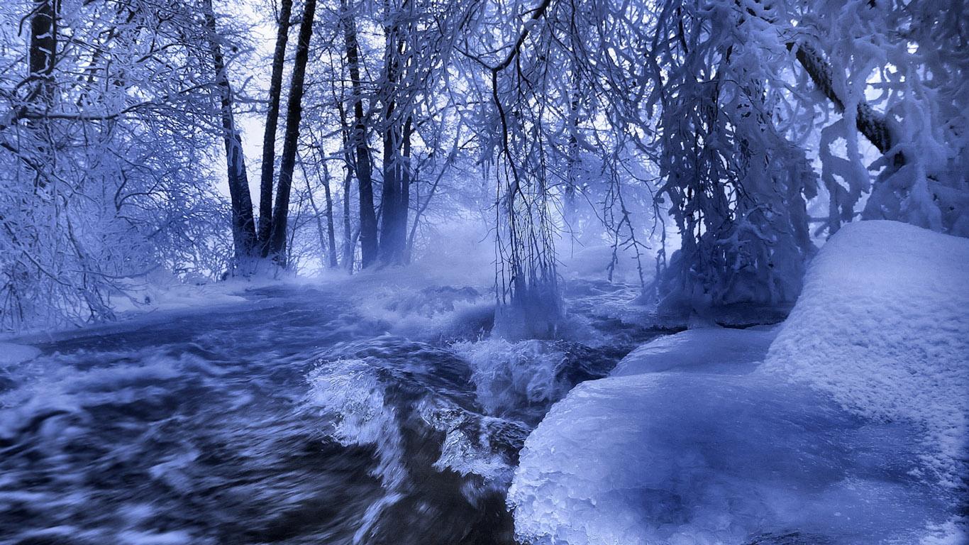 живые картинки зимняя природа
