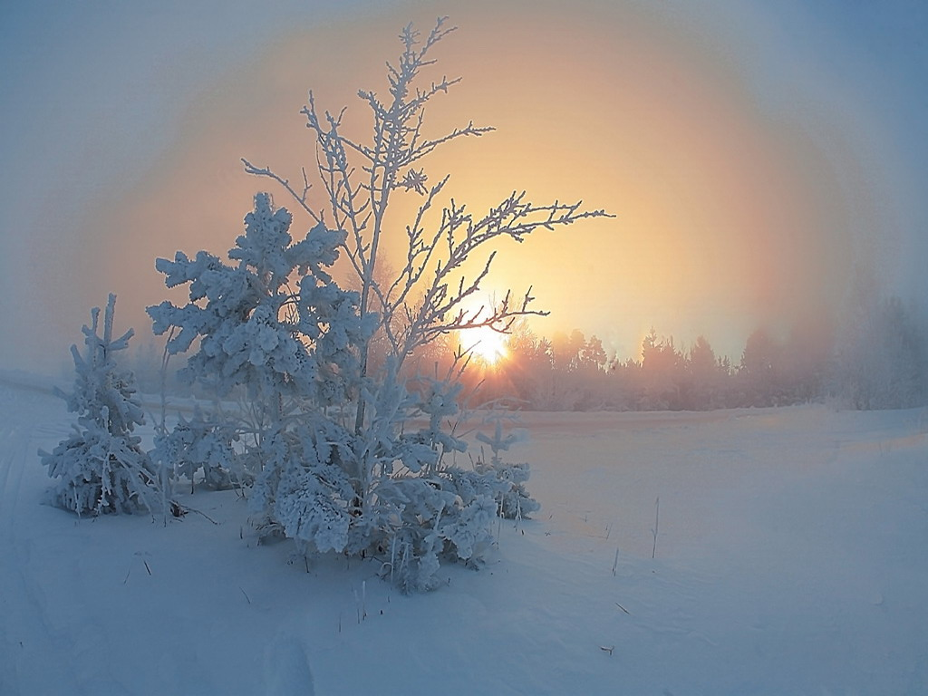zima-krasivie-oboi-v2.orig_.jpg