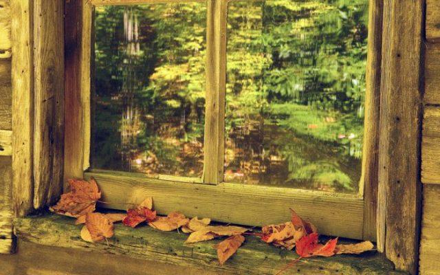 осень за окном картинка