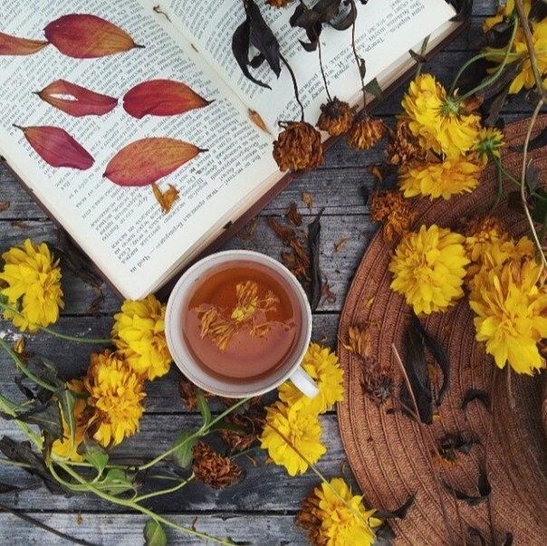 Уютные осенние картинки (35 фото) • Прикольные картинки и юмор Девушка Пьет Кофе