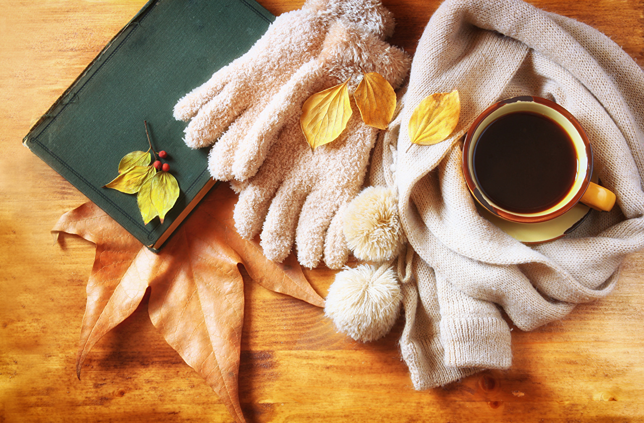 картинки осень теплый плед торговой сети