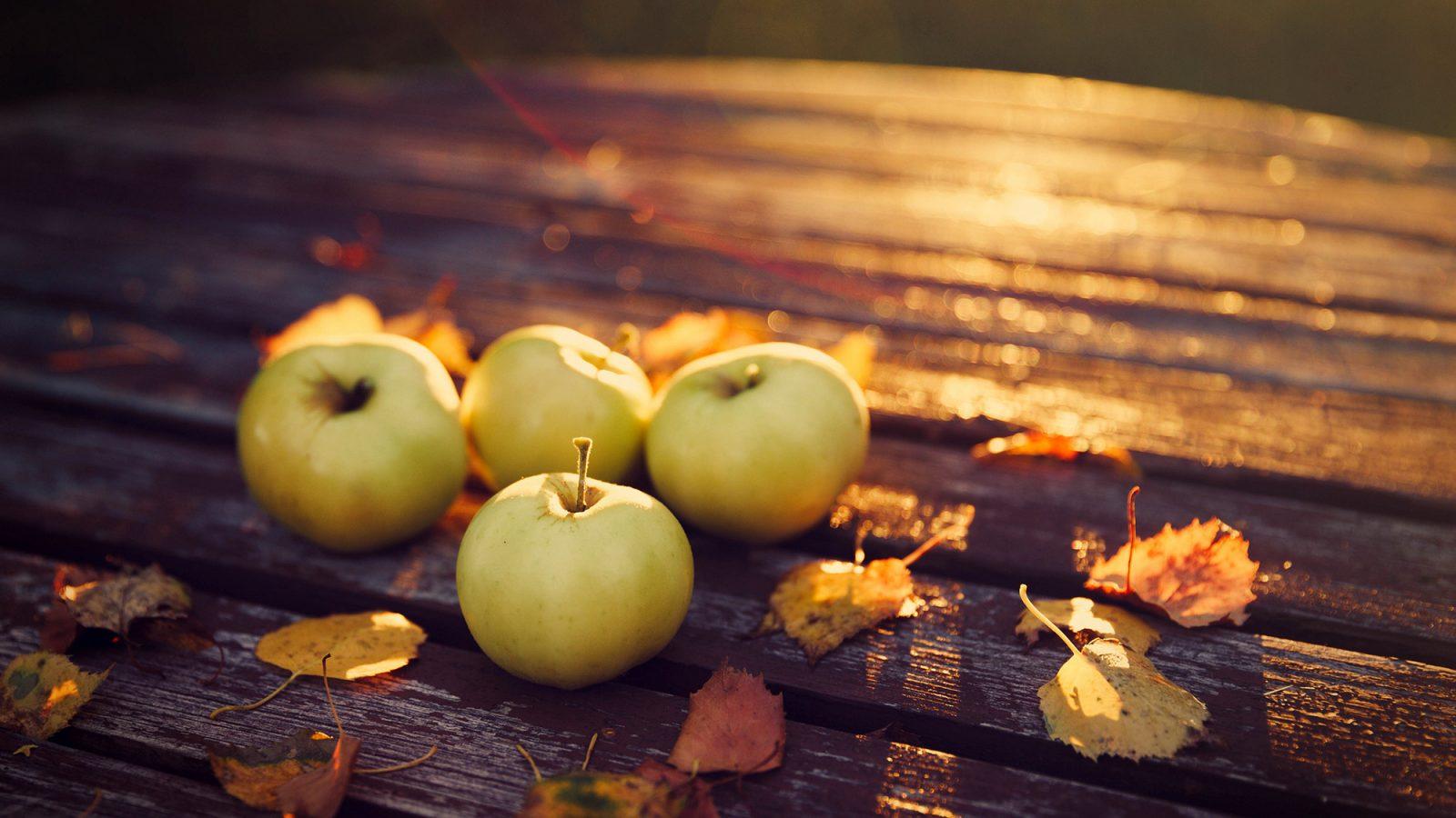 красивые осенние картинки с яблоками костюм был