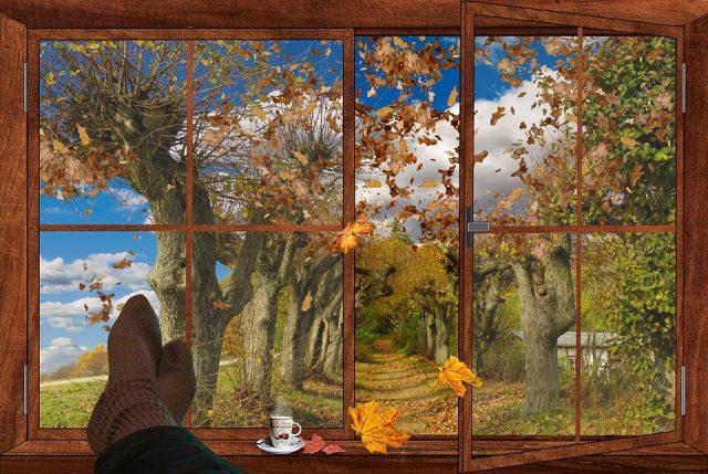 Картинки осень за окном (35 фото) 🔥 Прикольные картинки и юмор