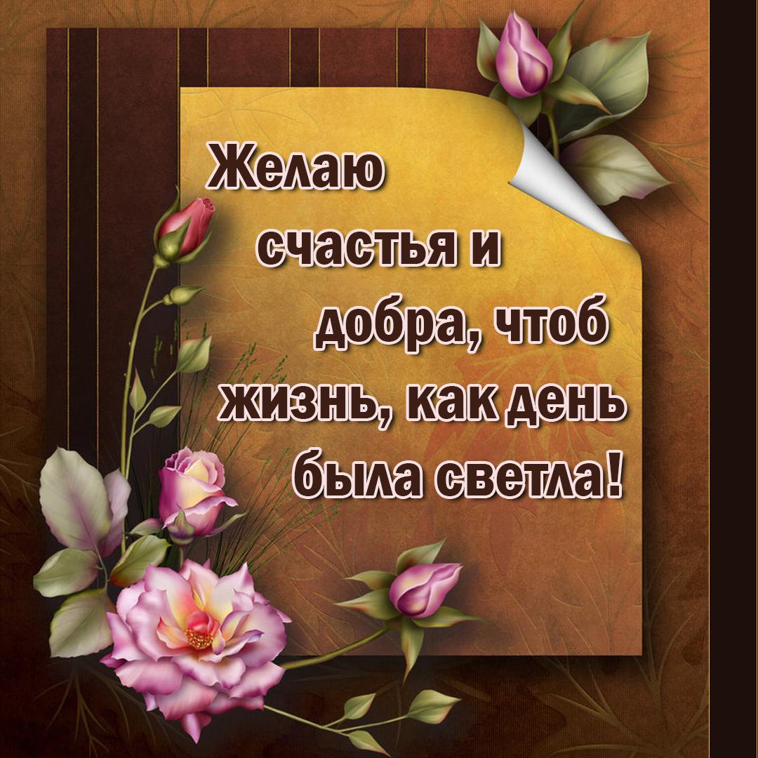 ежам открытки счастья и доброты они