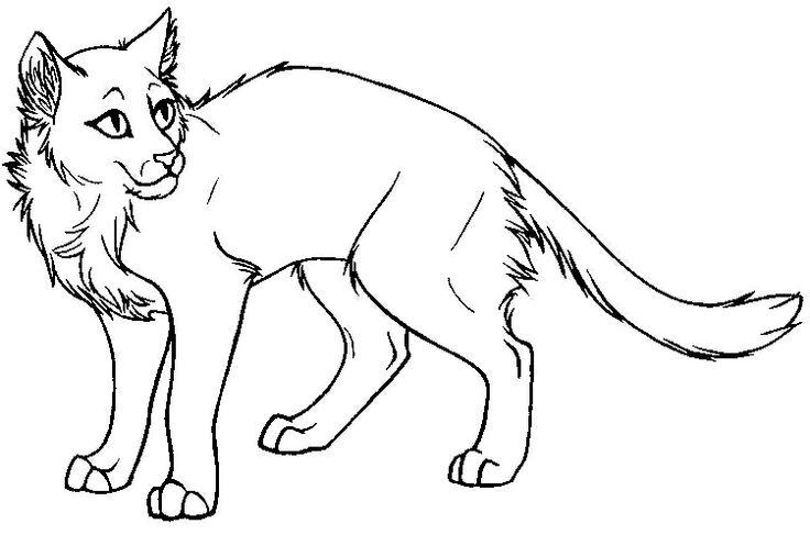 Нарисованные не разукрашенные коты воители