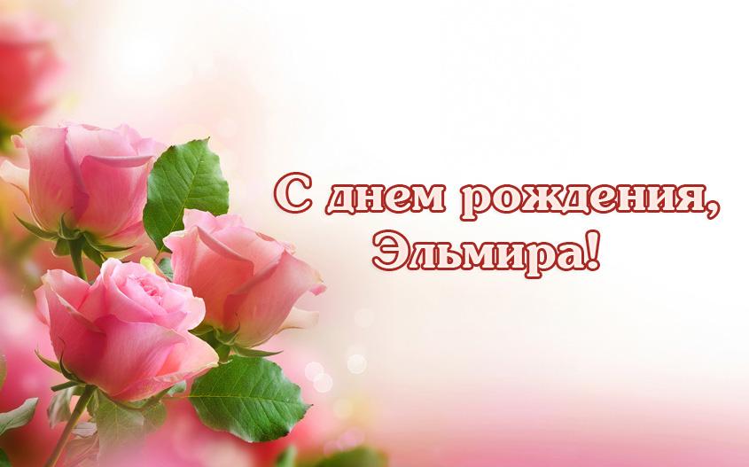 Поздравления букет, картинки с надписью эльмира