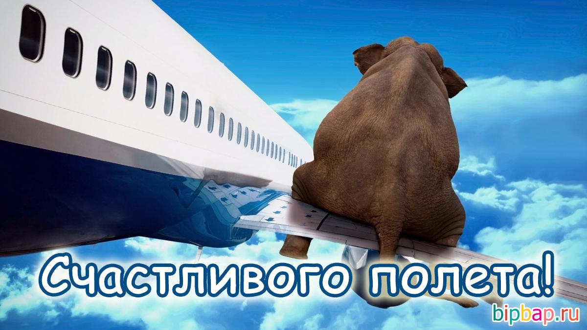 Пожелания пилоту перед полетом