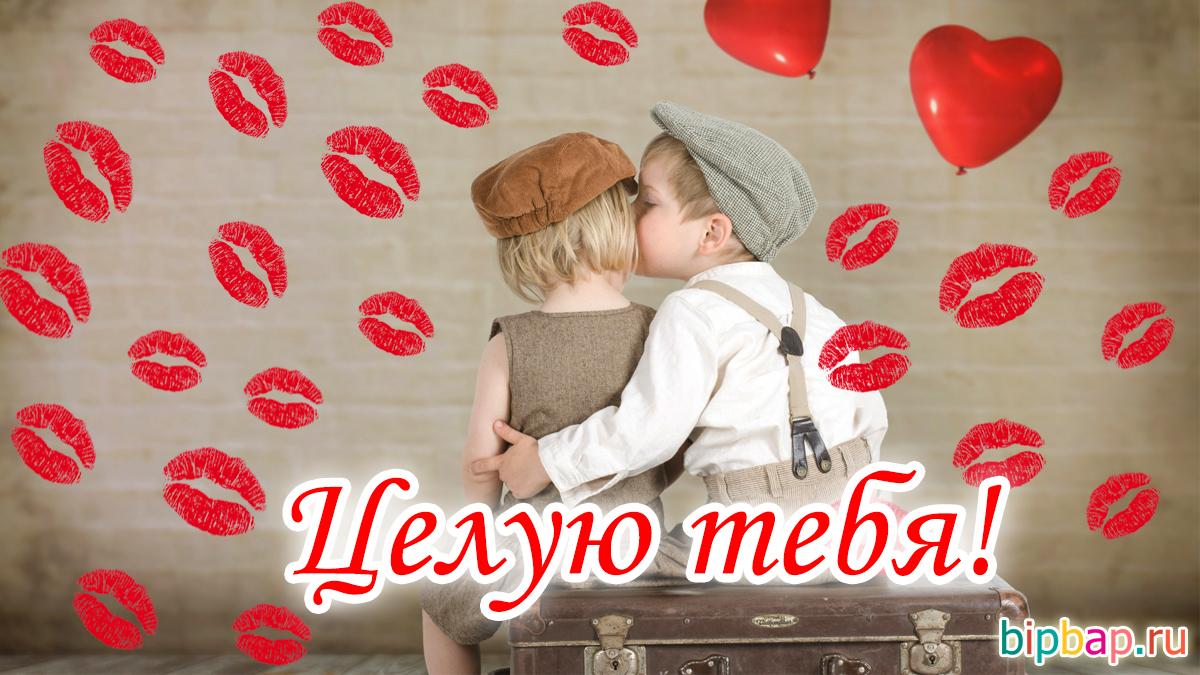 открытки люблю обнимаю и целуются трав мхов таком