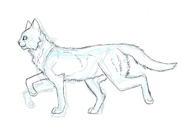 Для сестры, картинки карандашом коты воители для срисовки
