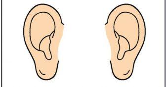 Картинка для детей ухо (5 фото)