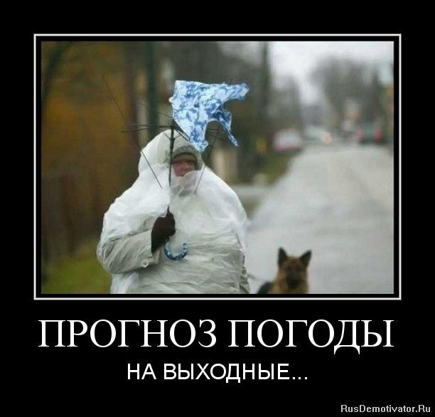 Смешные картинки про хреновую погоду