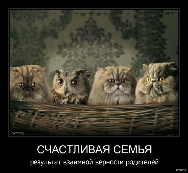 про семью смешные картинки
