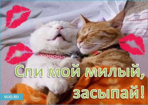 https://bipbap.ru/wp-content/uploads/2018/03/1508521240_1457980520_spokoynoy-nochi-pozhelaniya.png