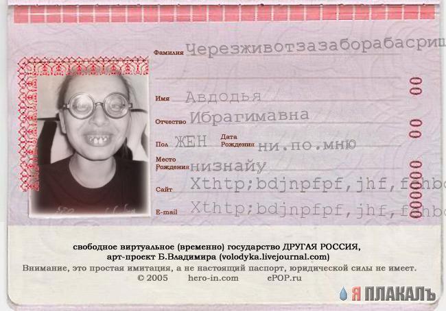 Смешные картинки для паспорта