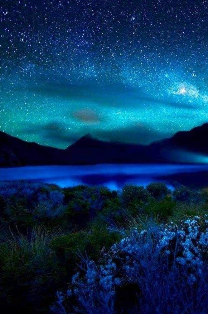Красивая ночная природа картинки