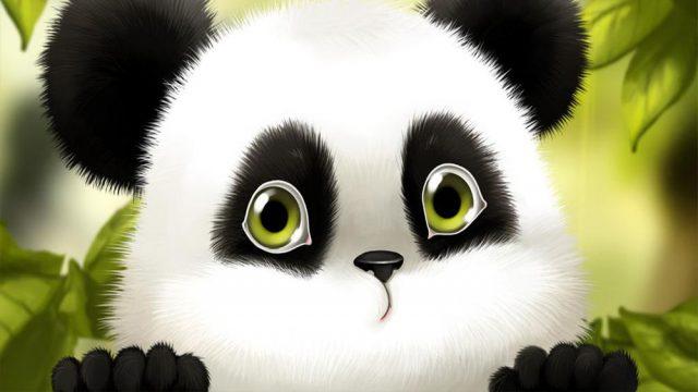 Panda скачать картинку бесплатно на смартфон, планшет и другие.