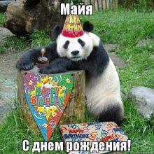 Смешные картинки поздравления С Днем Рождения Майя (24 фото)