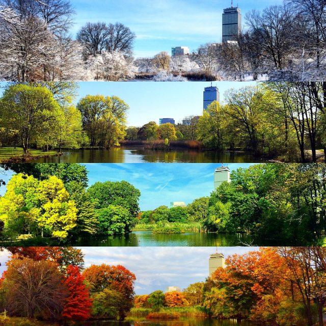 Картинки весна лето осень